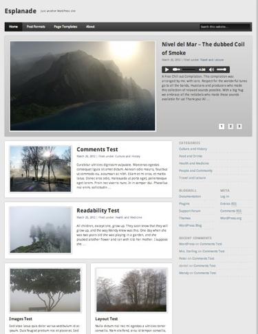 Esplanade WordPress Theme