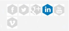 MSIT Social Media Widget PlugIn