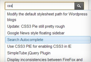 Search Autocomplete PlugIn
