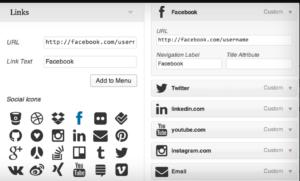 Menu Social Icons PlugIn