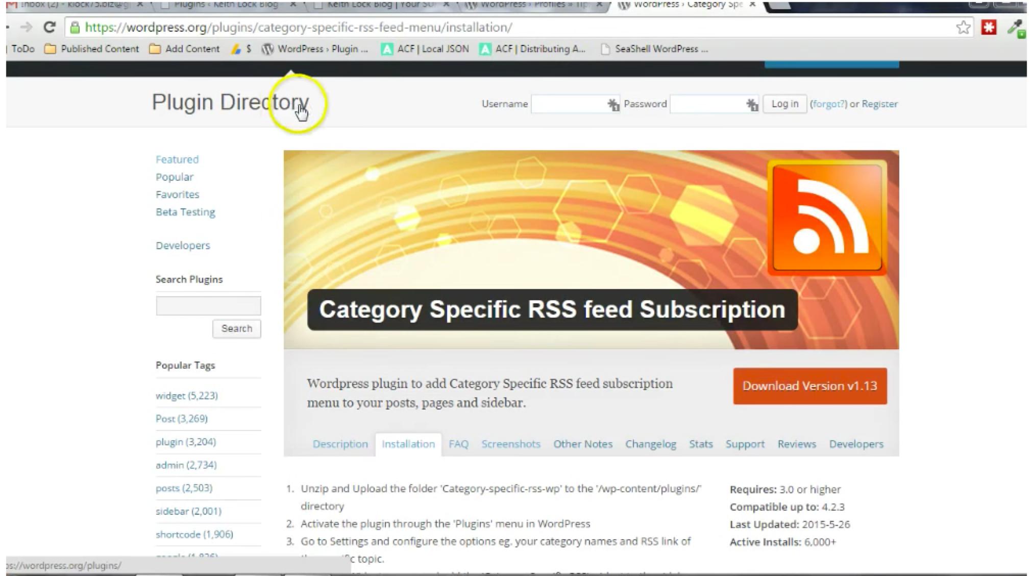 Category Specific RSS Menu PlugIn
