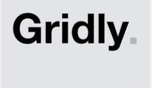 Gridly WordPress Theme