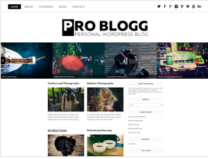 Pro Blog WordPress Theme