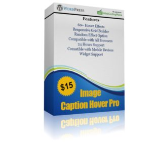 Image Caption Hover PlugIn